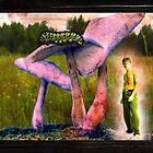 Alex in wonderland by Gal Lo Leggio