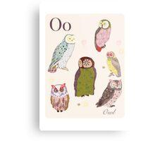 alphabet poster - owls Metal Print
