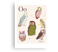 alphabet poster - owls Canvas Print