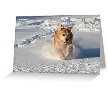 Lovin The Snow! Greeting Card