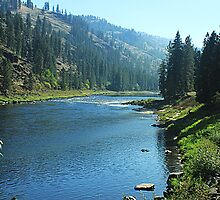 Clearwater River #2 by Mike  Kinney