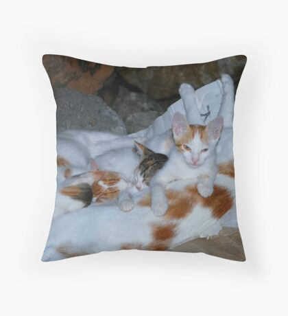 A Cuddle of Cats Throw Pillow