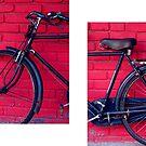 bicycle by Sameer R.K.