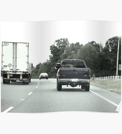 Truckin Dog Poster