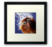 Ratso the Pez is on the Loose!! Framed Print