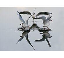 Dancing On Ice 2 Photographic Print