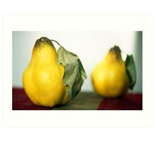 A Pear Of Quince Art Print