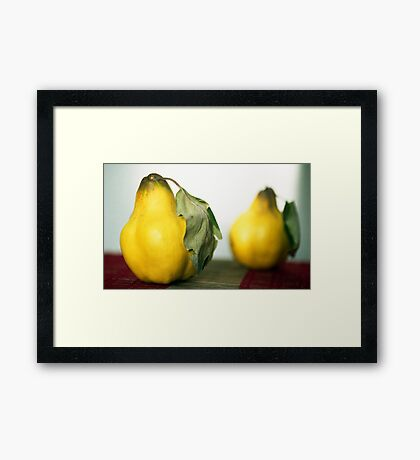 A Pear Of Quince Framed Print