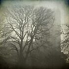 Hingham Church in the fog, Norfolk by DaveTurner
