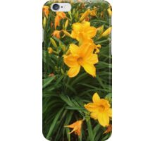 Yellow Lillies Blooming iPhone Case/Skin
