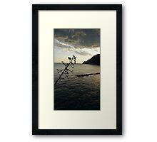 """""""Walking Sunset"""" Framed Print"""