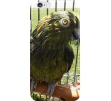 Parrot Sunning iPhone Case/Skin