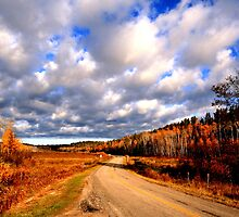 Whiteshell Provincial Park, Manitoba, Canada by Larry Trupp
