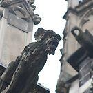 Aachen gargoyle by DKphotoart