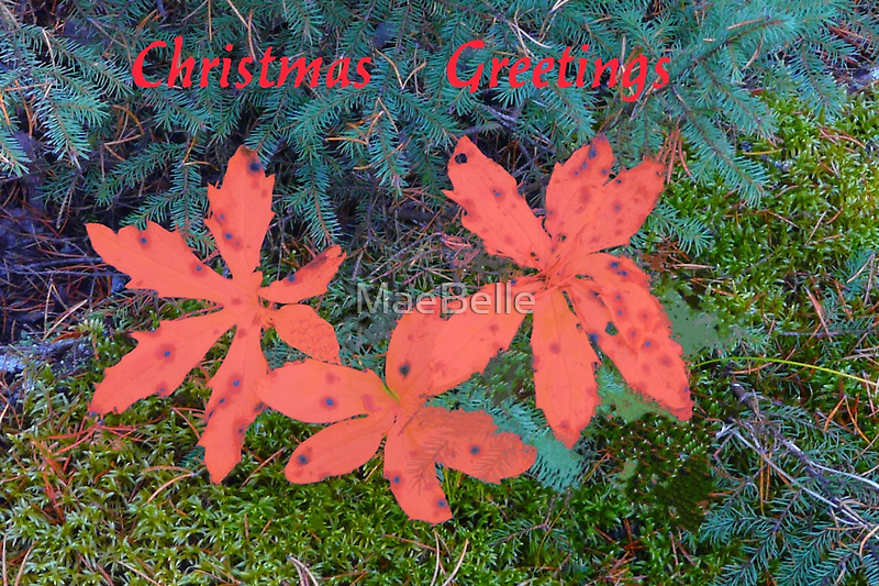 Christmas Greetings by MaeBelle