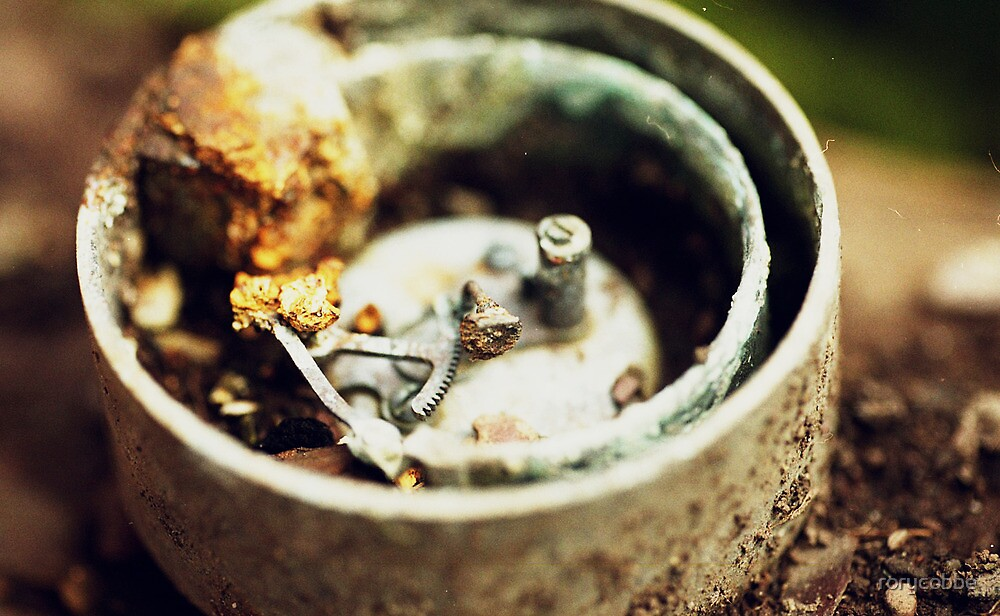 Metal Ting Macro by rorycobbe