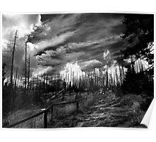 Šumavá Poster