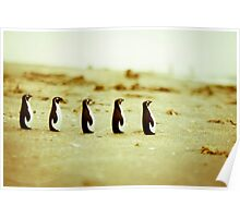 Penguins marching on the sand Poster