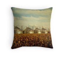 """Bins"" - Mississippi Delta Throw Pillow"