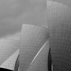 Sydney Opera House, New South Wales, Australia by Alastair Faulkner