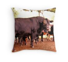 """""""I May Look Gentle, But Try Pushing My Buttons!""""... prints and products Throw Pillow"""