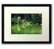 Reflecting- Cle Elum,Wa Framed Print