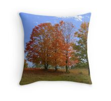 Colour On The Hill Throw Pillow