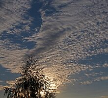 patterns in the sky at dawn (Cieszyn, Poland) by KondzioK