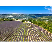 Lavender Field in Provence, France Photographic Print