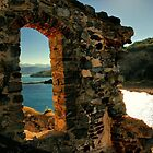 Ligurian Sun by Barbara  Brown