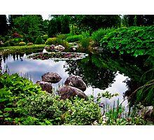 Garden Reflections ... Photographic Print