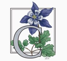 C is for Columbine - full image by Stephanie Smith
