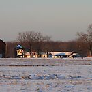 February Morning on the Farm by Geno Rugh