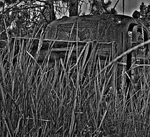 Old Truck In The Weeds by OneRudeDawg