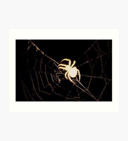 Creepy Spider Art Print