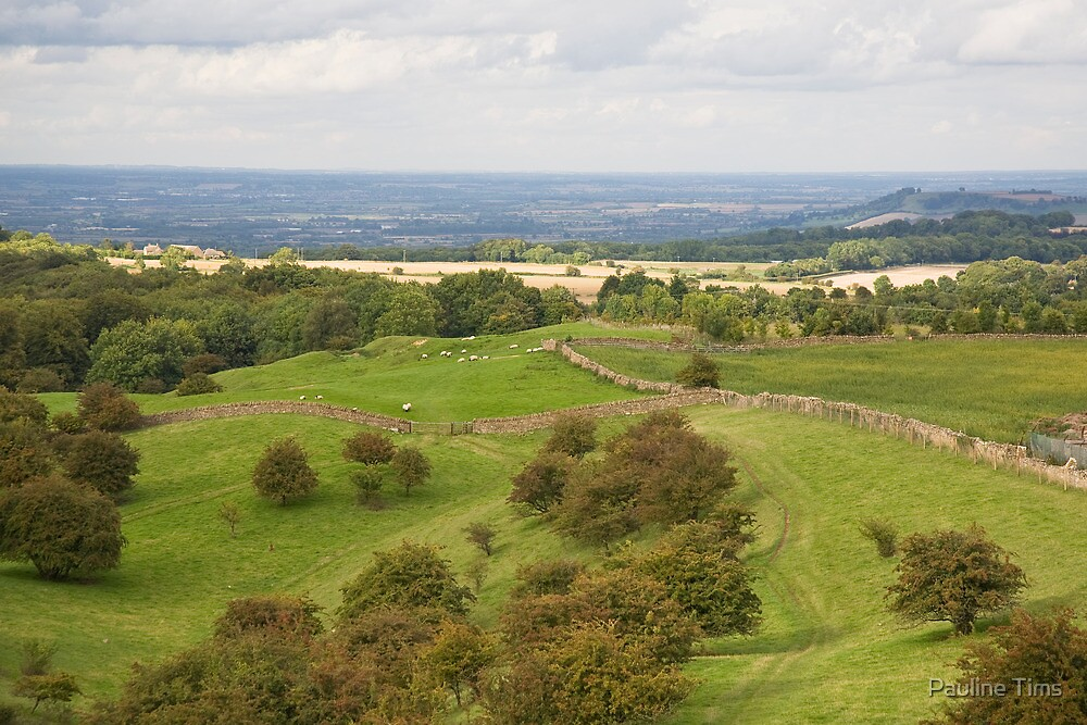 Cotswold View by Pauline Tims