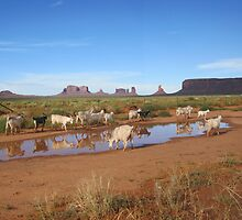 Monument Valley Goats  by aura2000