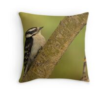 A Downy Woodpecker Throw Pillow