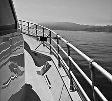 Catalina in the Distance-B&W by JD Delgado