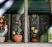 Norah's Window by steen
