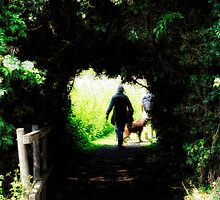 Through the Hedge. by Karen  Betts