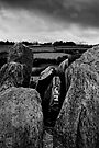 Knockroe passage tomb, County Kilkenny, Ireland by Andrew Jones
