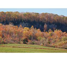 Hillside Splendor Photographic Print
