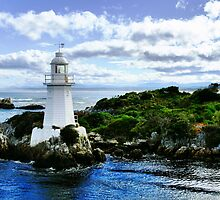 Maquarie Heads Lighthouse - Tasmania by Carol Knudsen