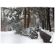 Snow Covering Poster