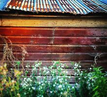 Rusty tin roof on a red barn  by JULIENICOLEWEBB