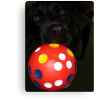 Two Eyes, One Nose and a Ball Canvas Print