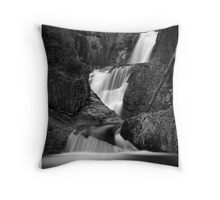 Smalls Falls in B&W Throw Pillow