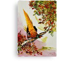 Pheasant on Branch Canvas Print