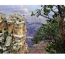 South Rim Trail of Grand Canyon, Arizona Photographic Print